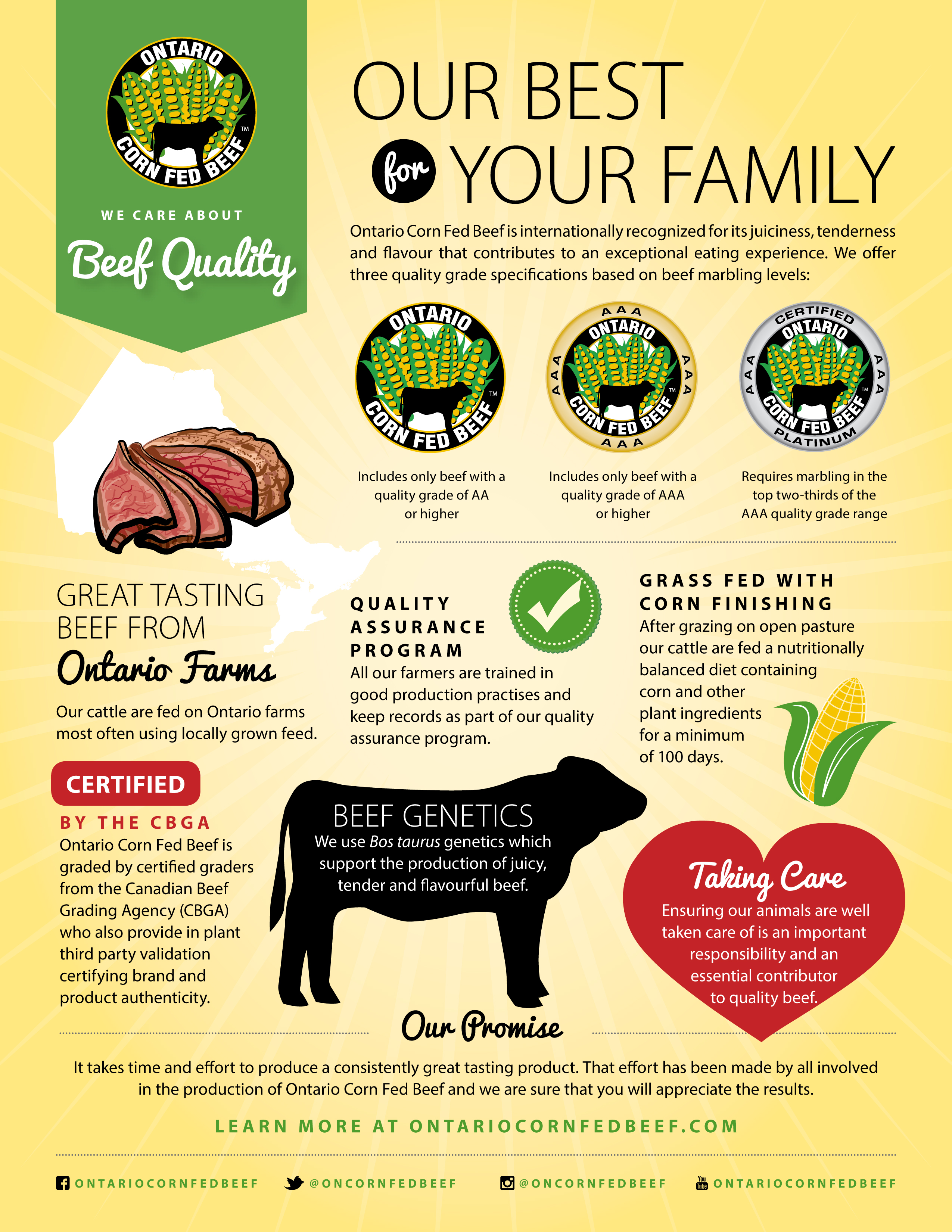 beef-quality-ocfb-web