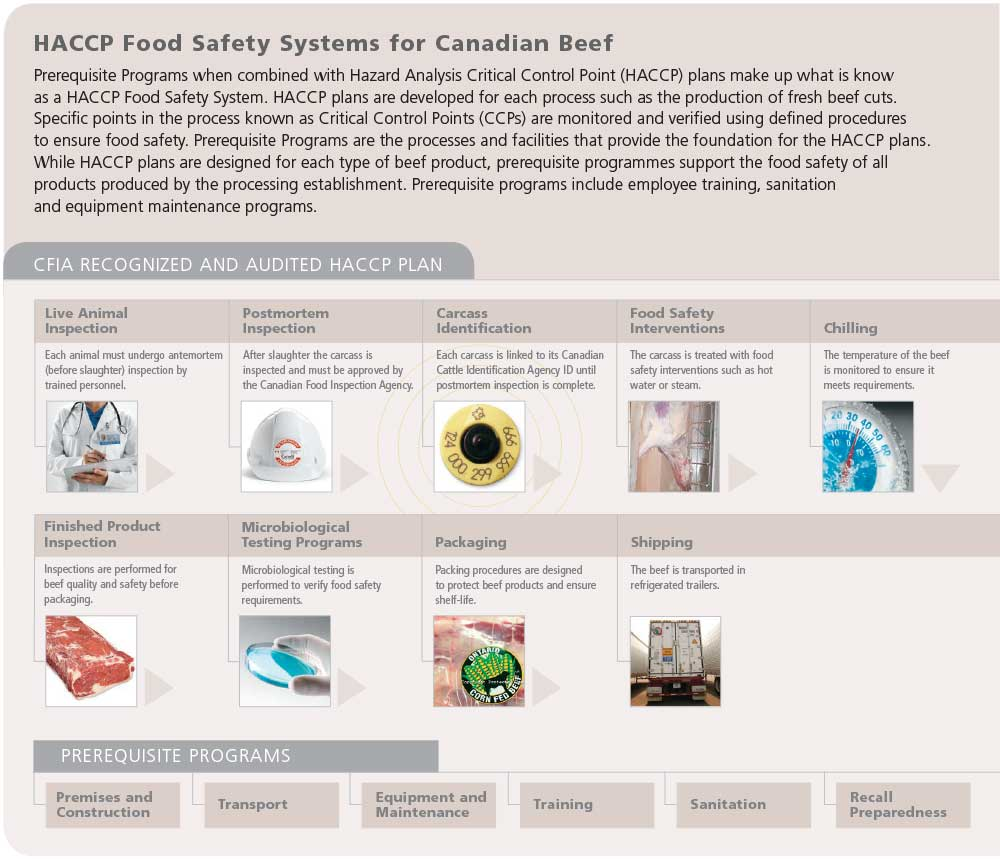 Food safety system ontario cattle feeders - Procedure haccp cuisine ...
