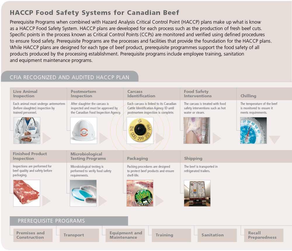 HACCP-diagram